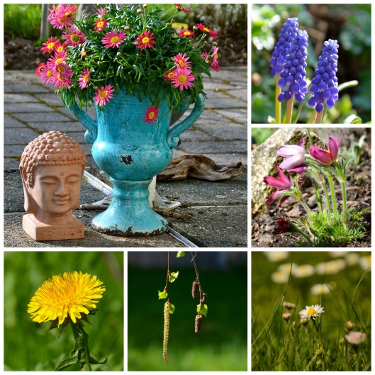 Gartenblicke