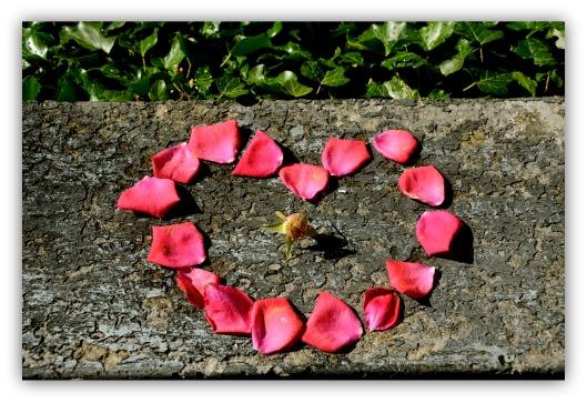 Rosenblätterherz