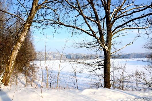 Wintermärchen1