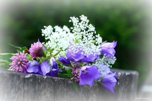 Blumenstrauß5
