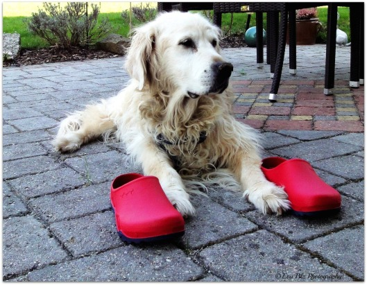 Tessy mit roten Schuhen