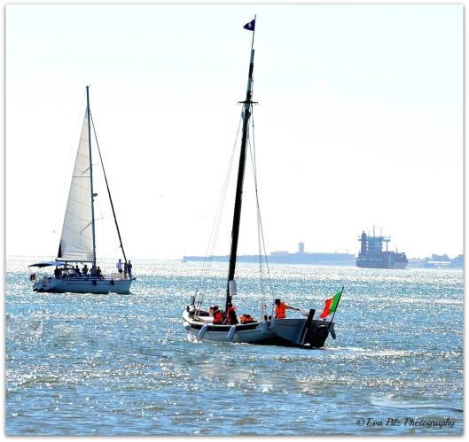 Segelboote7