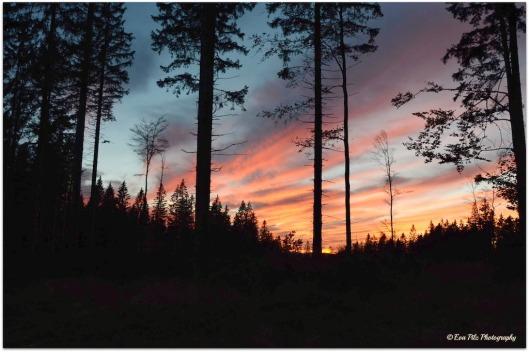 Nebelstein Sonnenuntergang