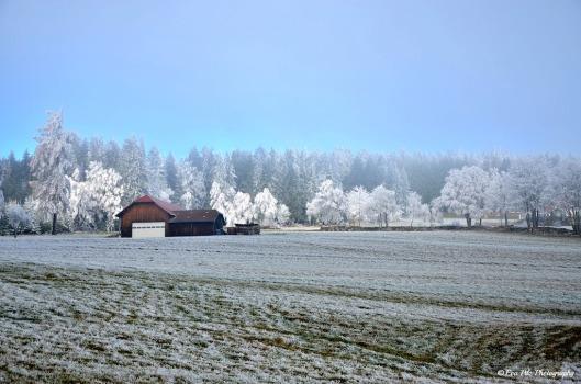 Winterwunderland3