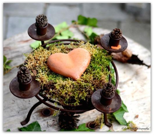 Herz auf Moos