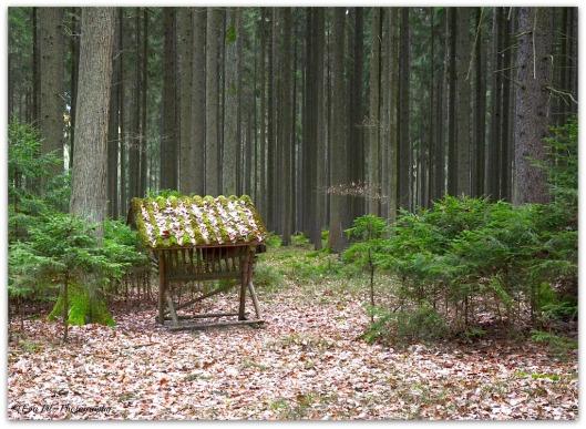 Waldkrippe