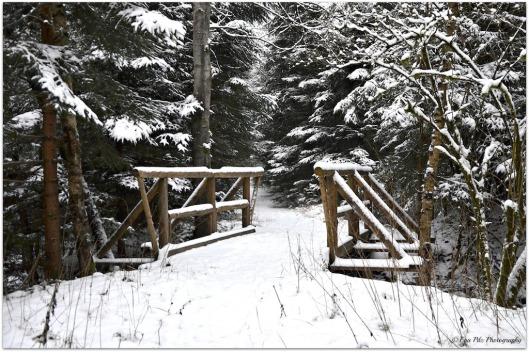Brücke im Schnee