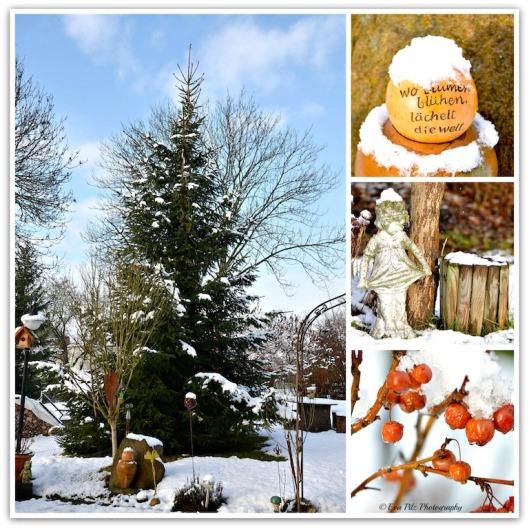 mein Wintergarten