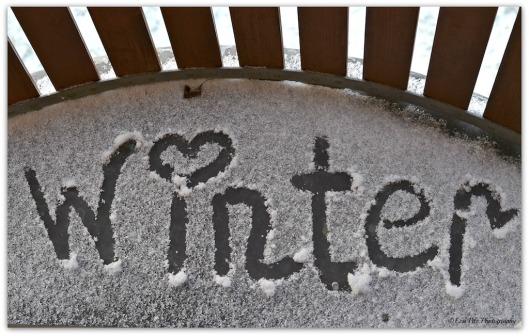 Winter mit Herz