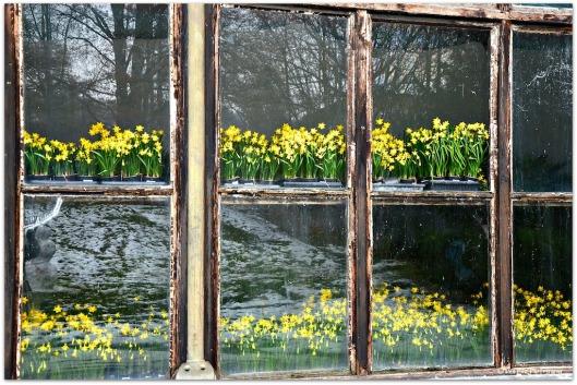 im Startloch Frühling