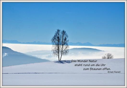 Winterkarte Ferstl
