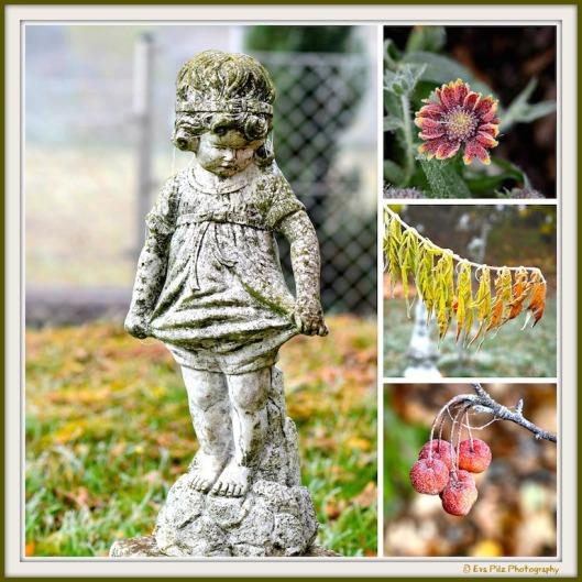 Herbstgarten5