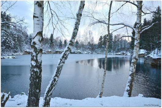Schotterteich im Winter.jpg