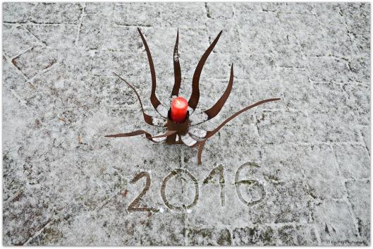 Neujahrsmorgen.jpg
