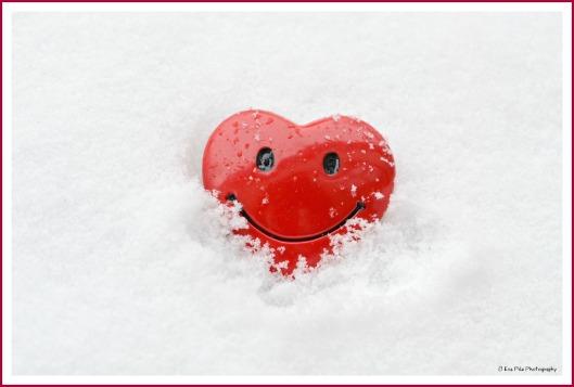 rotes Schneeherz.jpg