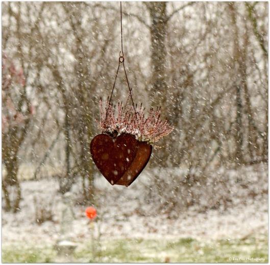 Wintergartenherz.jpg