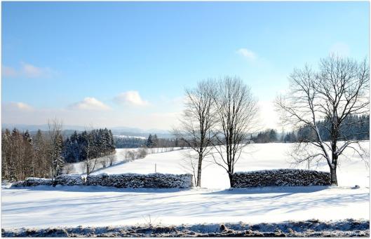 Winterlandschaft4.jpg
