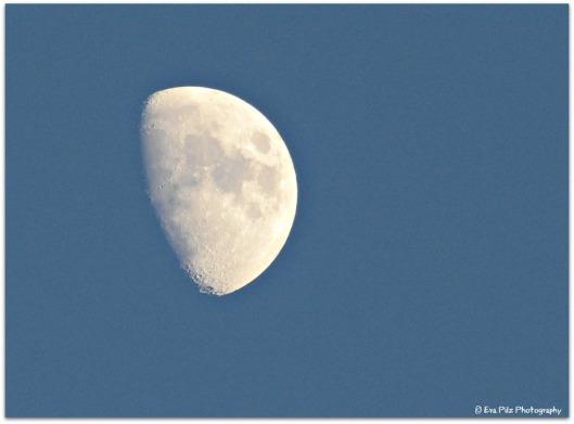 zunehmender Mond.jpg