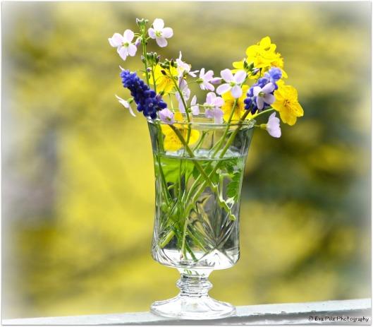 Blumenstrauß Garten
