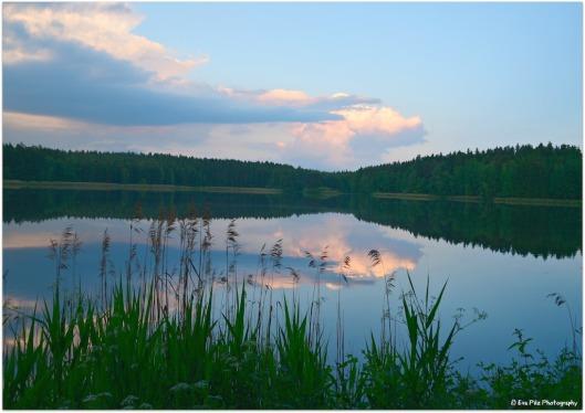 Abendstimmung am Teich1