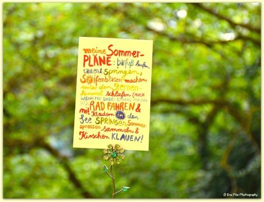 Sommerpläne