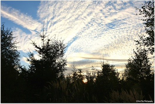 Himmelsblick1.jpg