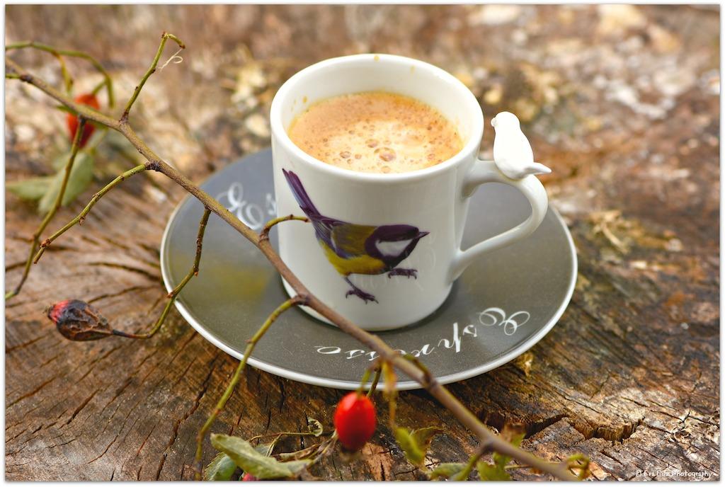 Tag des Kaffees3.jpg