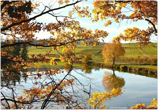 Herbst AW1.jpg