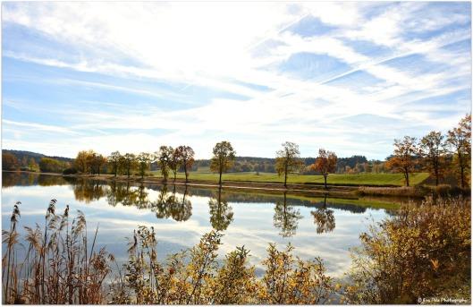 Herbstspiegelung1.jpg