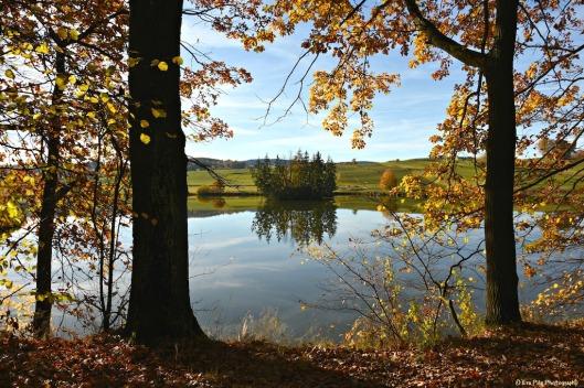 Herbstspiegelung3.jpg