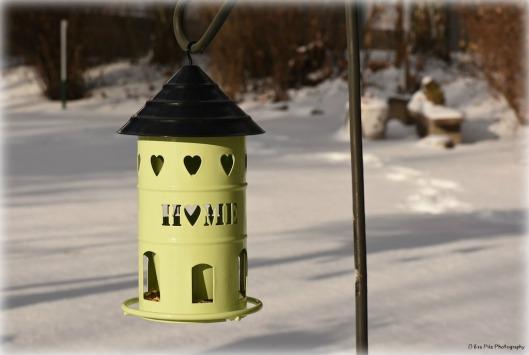 vogelhaus-mit-herz2