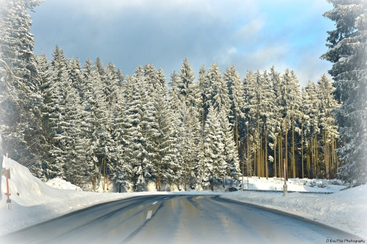 Winterlandschaft1.jpg