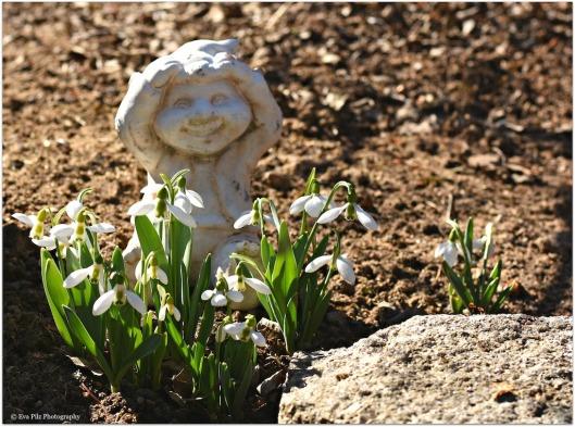 Frühlingsgnom.jpg