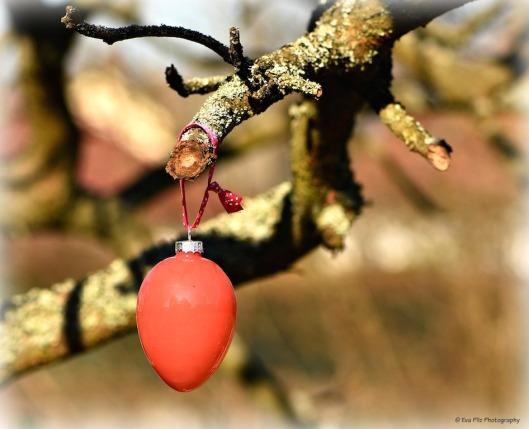 Osterei am Baum