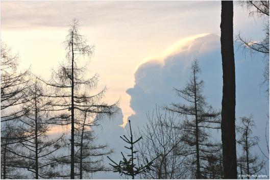 Wolkenfrau.jpg