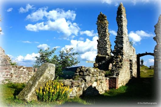 Ruine Waxenberg.jpg