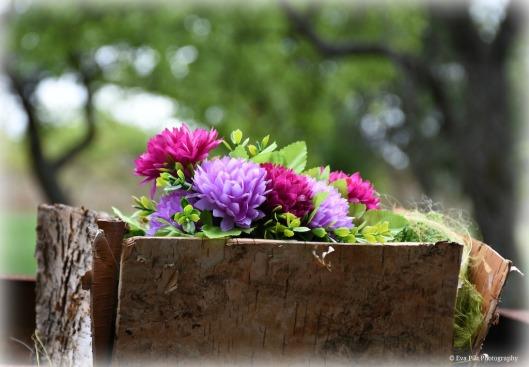 Blumen bunt.jpg