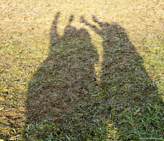 Schattenbild.jpg