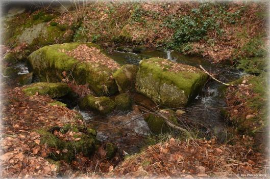 tuxpi.com.1517642007.jpg