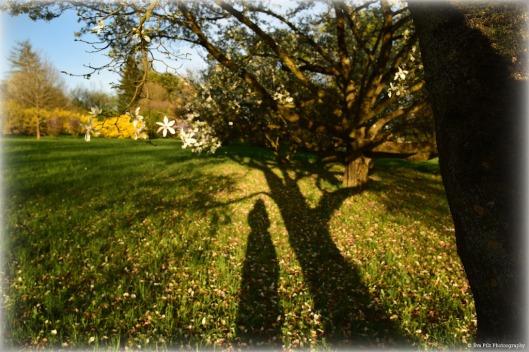 tuxpi.com.1523761687.jpg