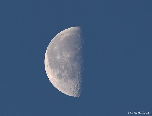 tuxpi.com.1541253623.jpg