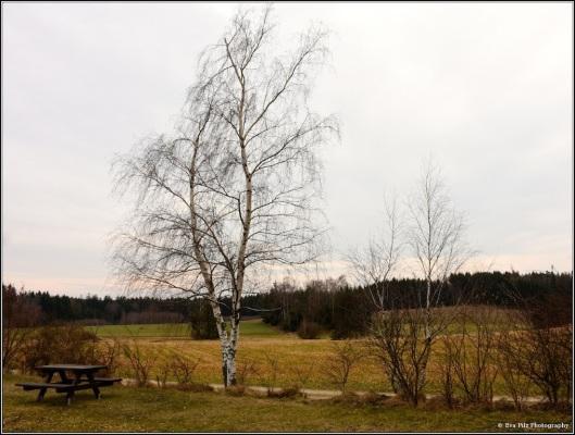 tuxpi.com.1552110600.jpg